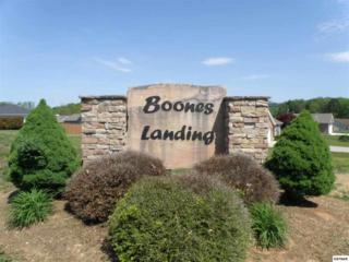 723  Boone Dr.  Lot 6, Seymour, TN 37865 (#194736) :: The Terrell Team
