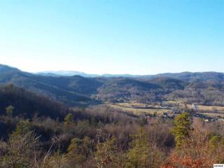 Lot 13  Glenview Way  Parcel 013.00, Sevierville, TN 37862 (#195047) :: The Terrell Team