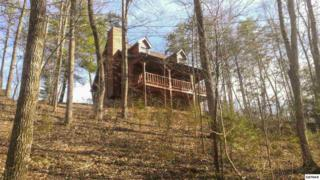 2913  Pine Haven Dr  , Sevierville, TN 37862 (#195068) :: The Terrell Team