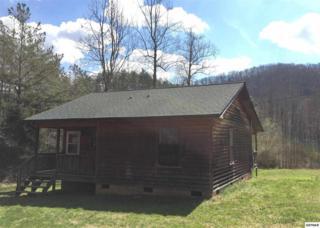 3945  Millers Ridge Way  , Sevierville, TN 37862 (#195114) :: The Terrell Team