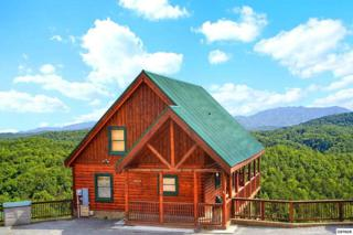 """4453  Forest Vista Way  """"Smoky Mountain, Pigeon Forge, TN 37863 (#195245) :: The Terrell Team"""