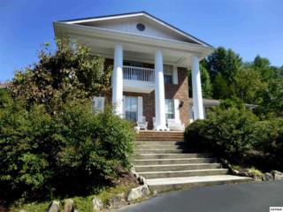 4031  Hitching Post Rd  , Pigeon Forge, TN 37863 (#195265) :: The Terrell Team