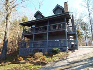 1024  Ravens Ford Way  , Sevierville, TN 37876 (#195284) :: The Terrell Team