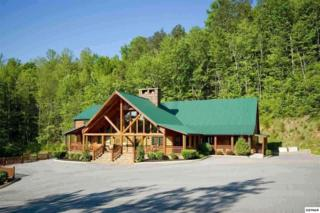 4544  Forest Vista Way  Lot 57R, Pigeon Forge, TN 37863 (#195297) :: The Terrell Team