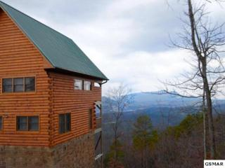 "1928  Legacy Drive  ""Nature's Nest"", Sevierville, TN 37876 (#195335) :: The Terrell Team"