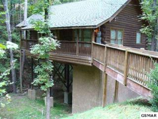 2764  Mountain View Circle  Creekside Parad, Sevierville, TN 37862 (#195436) :: The Terrell Team