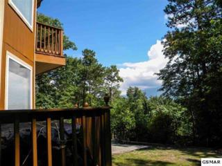 1463 S Baden Drive  , Gatlinburg, TN 37738 (#195450) :: The Terrell Team