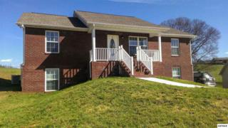 2106  Murphys Chapel Drive  , Sevierville, TN 37876 (#195521) :: The Terrell Team