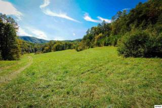 Mill  Mill Creek Rd  , Pigeon Forge, TN 37863 (#195799) :: The Terrell Team