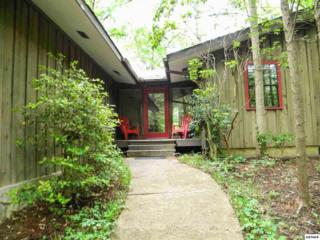 537  Bruce Rd  , Gatlinburg, TN 37738 (#195879) :: The Terrell Team