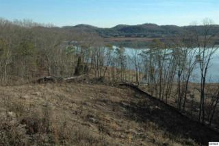 508  Channel Point Drive  , Mooresburg, TN 37811 (#195989) :: The Terrell Team