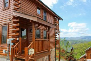2320  Top Of The World Drive  , Sevierville, TN 37876 (#196015) :: The Terrell Team