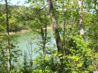 Lot 27  Sancturary Shores Way  , Sevierville, TN 37876 (#196146) :: The Terrell Team