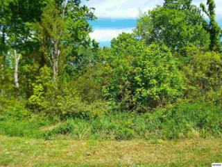 Lot 52  Rocky Point Way  , Sevierville, TN 37876 (#196150) :: The Terrell Team