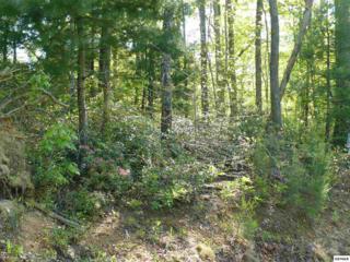 89  Bird View Lane  , Sevierville, TN 37862 (#196173) :: The Terrell Team