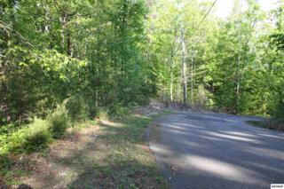 Lot 37  Scenic Woods Way  , Sevierville, TN 37876 (#196184) :: The Terrell Team