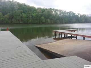 317  Rivers Edge Dr.  , Loudon, TN 37774 (#196216) :: The Terrell Team