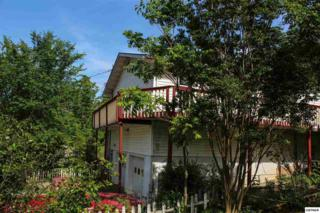 1739  Parlin Drive  , Pigeon Forge, TN 37863 (#196625) :: The Terrell Team