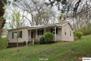 2210  Kimberlin Heights Rd.  , Knoxville, TN 37920 (#196650) :: The Terrell Team