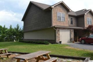 611  Asbury Dr  Unit 1, Pigeon Forge, TN 37863 (#196655) :: The Terrell Team