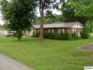2724  Florence Drive  , Pigeon Forge, TN 37863 (#196691) :: The Terrell Team