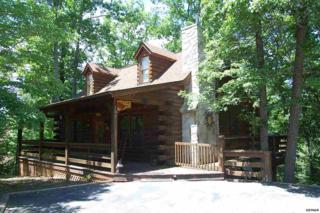 674  Kings Hills Blvd  , Pigeon Forge, TN 37863 (#196725) :: The Terrell Team