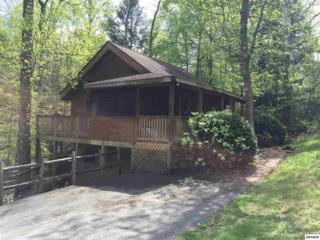 3002  Eagles Claw Way  , Pigeon Forge, TN 37863 (#196734) :: The Terrell Team