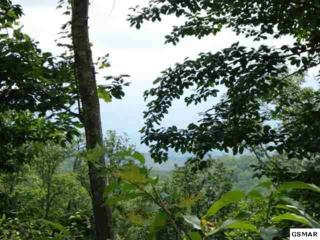 Lot 812  Rhododendron Lane  , Sevierville, TN 37876 (#196793) :: The Terrell Team