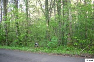 Lot 10  Baxter Rd  , Cosby, TN 37722 (#196797) :: The Terrell Team