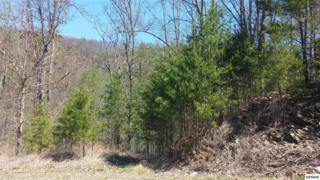 Lot 63E  Redtail Road  , Sevierville, TN 37876 (#196813) :: The Terrell Team