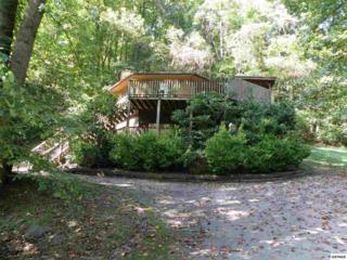 1157  Villa Drive  , Gatlinburg, TN 37738 (#181838) :: The Terrell Team