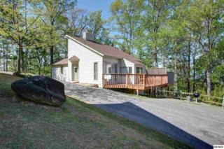 1427 S Baden Drive  , Gatlinburg, TN 37738 (#187106) :: The Terrell Team