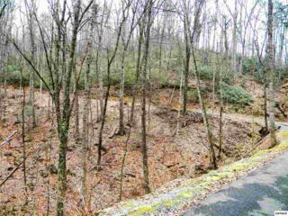 Lot 10  Buena Vista Dr  , Sevierville, TN 37876 (#187455) :: The Terrell Team