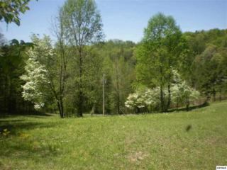 Parcel 65.13  Timber Lake Way  , Cosby, TN 37722 (#187524) :: The Terrell Team