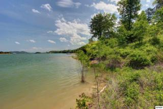 L9  Harbor Point Drive  , Sevierville, TN 37876 (#189290) :: The Terrell Team
