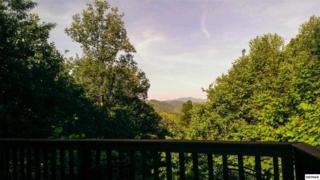 941  Cliff Branch Rd  Sweet Dreams, Gatlinburg, TN 37738 (#189569) :: The Terrell Team