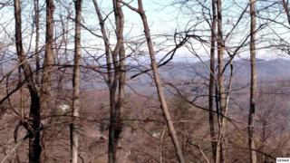 Parcel B 041.00  Chestnut Drive  , Gatlinburg, TN 37738 (#191005) :: The Terrell Team