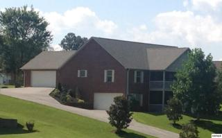 2168  Summerfield Ln  , Sevierville, TN 37876 (#192017) :: The Terrell Team