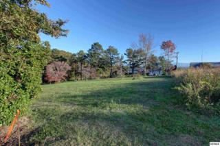 L45  Fisherman Street  , Kodak, TN 37764 (#192781) :: The Terrell Team