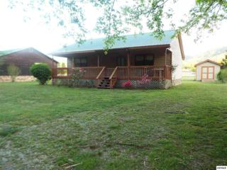 193  Padgett Mill Rd.  , Cosby, TN 37722 (#193136) :: The Terrell Team