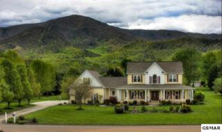 3529  Hiley Drive  , Sevierville, TN 37862 (#195990) :: The Terrell Team