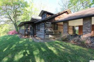 3739  Old Mountain Rd  , Sevierville, TN 37876 (#196478) :: The Terrell Team