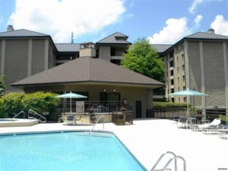 1704  Hidden Hills Rd  Unit 512, Gatlinburg, TN 37738 (#181301) :: The Terrell Team