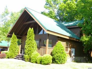 1644  Little Cabin Loop  , Sevierville, TN 37862 (#181710) :: The Terrell Team