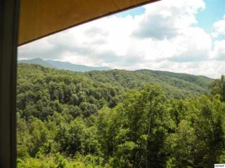 1824  Oriole Road  Unit 302, Gatlinburg, TN 37738 (#188557) :: The Terrell Team