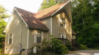 941  Cliff Branch Rd  Sweet Dreams, Gatlinburg, TN 37738 (#189569) :: The Terrell Team
