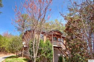 1311  Ski View Ln  High Country, Sevierville, TN 37876 (#190051) :: The Terrell Team