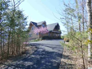 522  Pinnacle Vista Rd  , Gatlinburg, TN 37738 (#185928) :: The Terrell Team