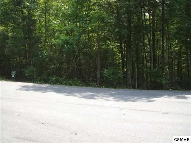 Lot 140 Bent Tree Lane - Photo 7