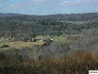 8.27 acres  Tolley Hollow  Old Edwina Road, Newport, TN 37821 (#192346) :: The Terrell Team